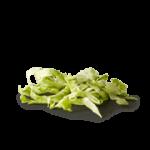 15_shreded_lettuce